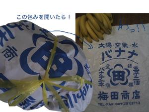 バナナの包み.jpg