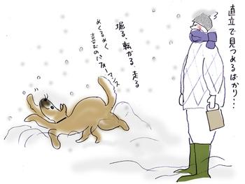 雪と犬.jpg