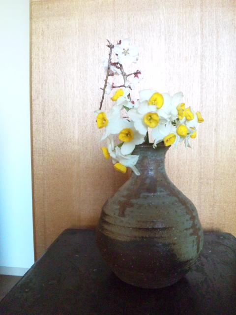 http://hohoho.pupu.jp/daily/images/120404_074806.jpg