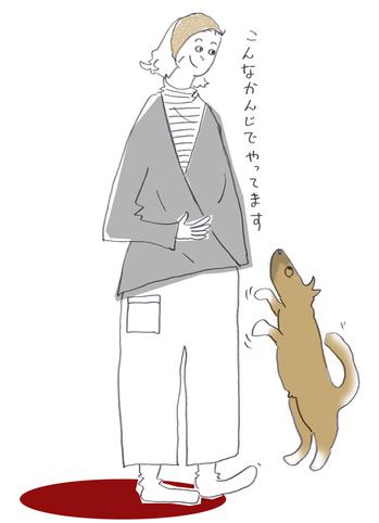 こんなかんじ.jpg